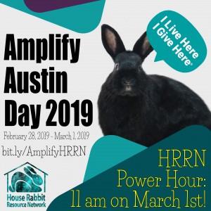 Amplify Austin Day! Donate to help HRRN!