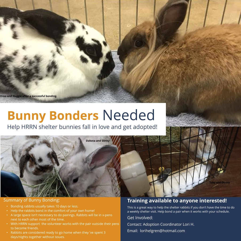 Bunny Bonders Needed