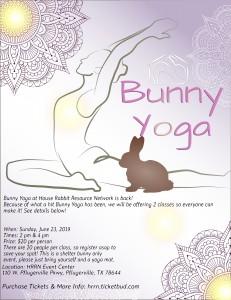 Bunny Yoga Flyer