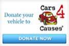 car 4 causes