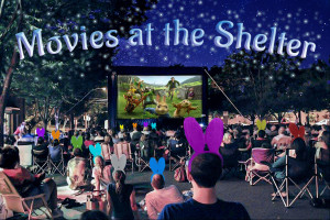 Movies At The Shelter