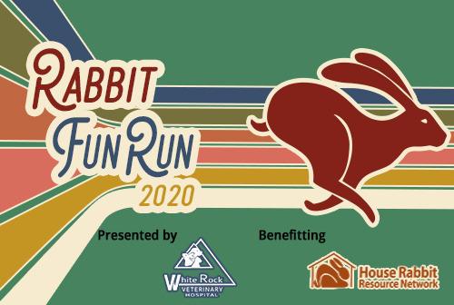 RabbitFunRun2020