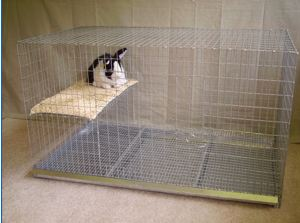 24x42x24 size cage