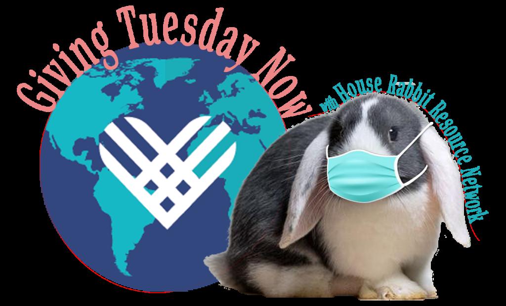 givingtuesdaynow PNG