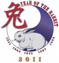 year of the rabbit graphic