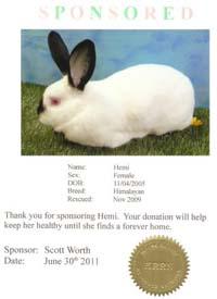 sponsor certificate