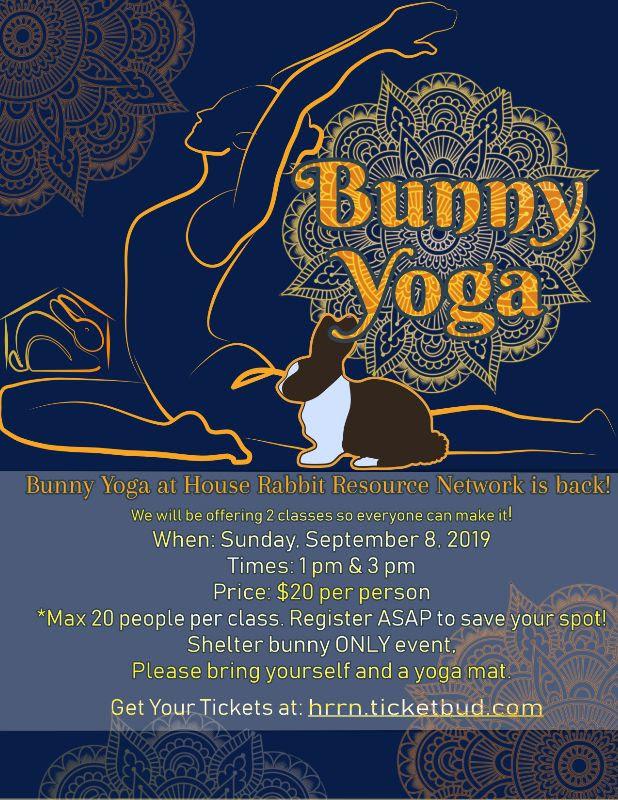 Bunny Yoga September 8, 2019
